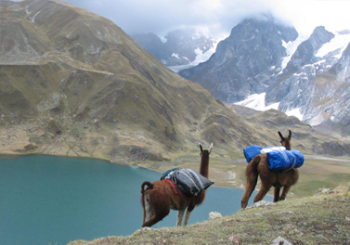 lares-trek-cusco